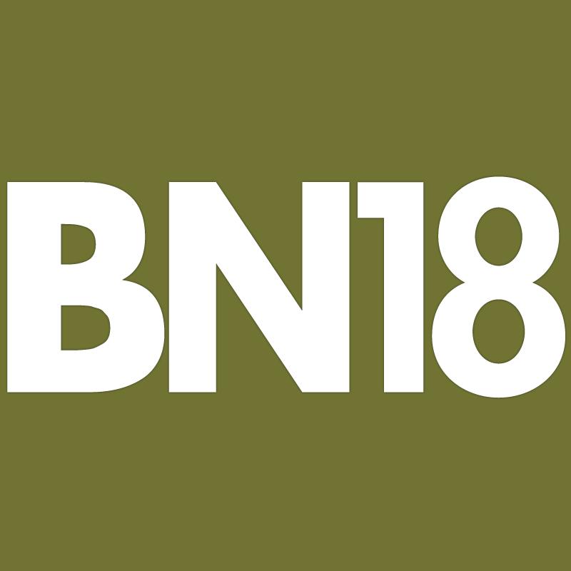 Arrow BN18 brad nails