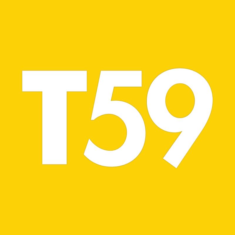 Arrow T59 staples